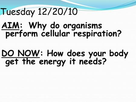 Tuesday 12/20/10 AIM: Why do organisms perform cellular respiration? DO NOW: How does your body get the energy it needs?
