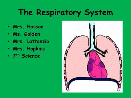 The Respiratory System Mrs. Hasson Ms. Golden Mrs. Lattanzio Mrs. Hopkins 7 th Science.