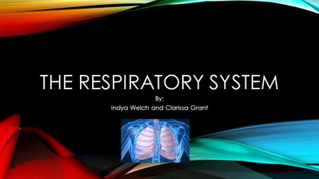 THE RESPIRATORY SYSTEM By: Indya Welch and Clarissa Grant.