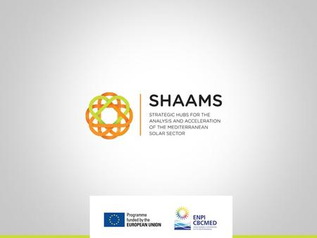 SHAAMS Next steps in Lebanon Policy Accelerator Policy Accelerator Activities Activity 1 Participant stakeholders identification Activity 2 Implementation.