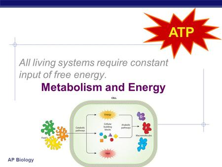 AP Biology All living systems require constant input of free energy. Metabolism and Energy.