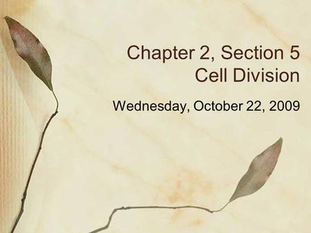 Chapter 2, Section 5 Cell Division Wednesday, October 22, 2009.