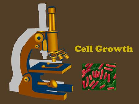 "Cell Growth. Before a cell gets too large, it divides forming two ""daughter"" cells."