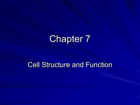 Chapter 7 Cell Structure and Function. Anton van Leeuwenhoek Father of the microscope - 1600's –used lens technology –fabric quality –telescope same time.