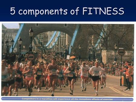 5 components of FITNESS.