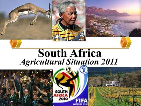 South Africa Agricultural Situation 2011. Economic Highlights Five year average real GDP growth of 3.7%, higher then the world average of 3.3% but lower.