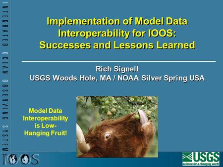 Implementation of Model Data Interoperability for IOOS: Successes and Lessons Learned Rich Signell USGS Woods Hole, MA / NOAA Silver Spring USA Model Data.