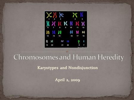 Karyotypes and Nondisjunction April 2, 2009. Some inherited traits can be identified at the chromosome level. Geneticists use karyotypes. Chromosomes.