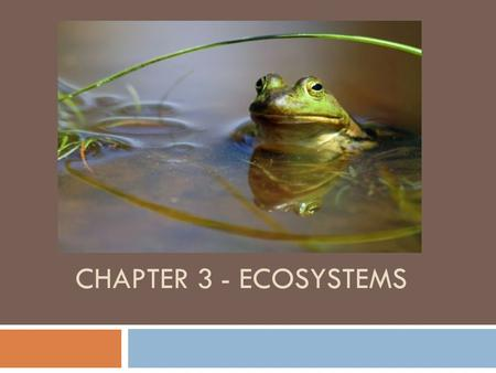 Chapter 3 - Ecosystems.