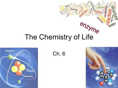 The Chemistry of Life Ch. 6.