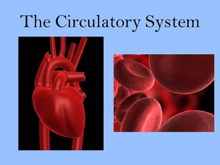 "The Circulatory System. Transport System Just like Nervous System is your body's ""Control Center,"" Your Circulatory System has an important job. It is."