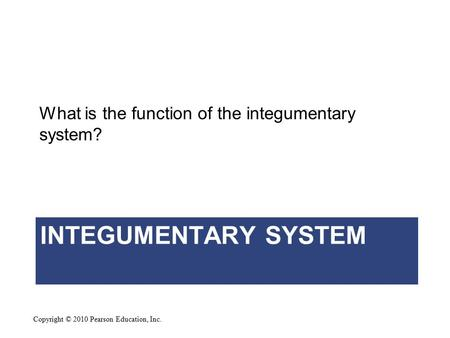 Copyright © 2010 Pearson Education, Inc. INTEGUMENTARY SYSTEM What is the function of the integumentary system?