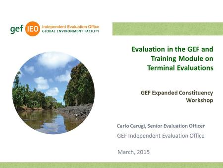 Evaluation in the GEF and Training Module on Terminal Evaluations