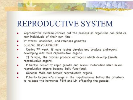 REPRODUCTIVE SYSTEM Reproductive system: carries out the process so organisms can produce new individuals of their own kind. It stores, nourishes, and.