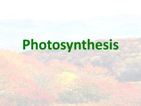 Photosynthesis. Energy & Life Energy, energy, ENERGY! Autotrophs vs. heterotrophs.
