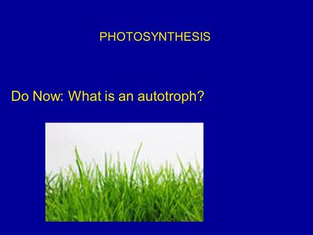 PHOTOSYNTHESIS Do Now: What is an autotroph?