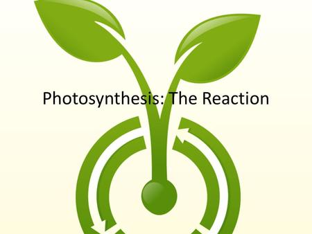 Photosynthesis: The Reaction. Recap…….. 6 CO 2 + 6 H 2 0  C 6 H 12 O 6 + 6 O 2  Q&feature=related.