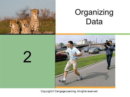 Copyright © Cengage Learning. All rights reserved. 2 Organizing Data.