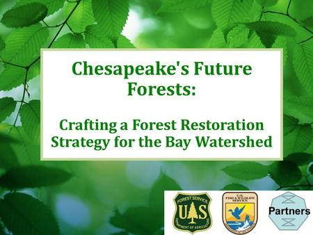 Chesapeake's Future Forests: Crafting a Forest Restoration Strategy for the Bay Watershed Partners.
