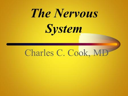 The Nervous System Charles C. Cook, MD.