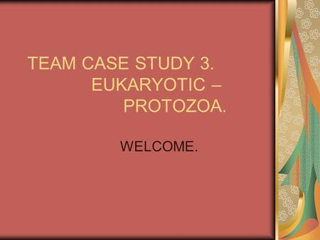 TEAM CASE STUDY 3. EUKARYOTIC – PROTOZOA.
