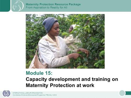 INTERNATIONAL LABOUR ORGANIZATION Conditions of Work and Employment Programme (TRAVAIL) 2012 Module 15: Capacity development and training on Maternity.