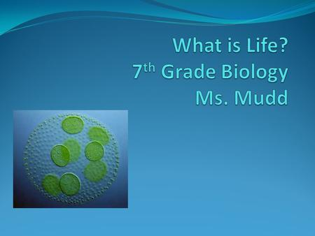 What is Life? 7th Grade Biology Ms. Mudd