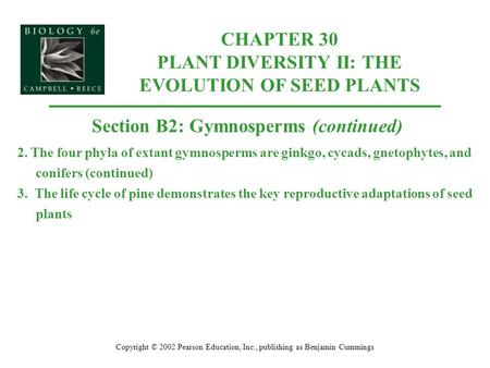 CHAPTER 30 PLANT DIVERSITY II: THE EVOLUTION OF SEED PLANTS Copyright © 2002 Pearson Education, Inc., publishing as Benjamin Cummings Section B2: Gymnosperms.