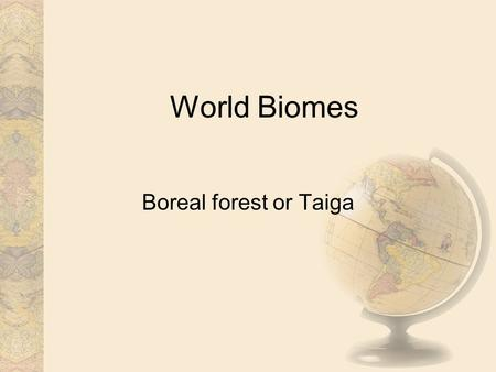 World Biomes Boreal forest or Taiga. Climate Long, cold winters, and short, mild, wet summers are typical of this region. In the winter, chilly winds.
