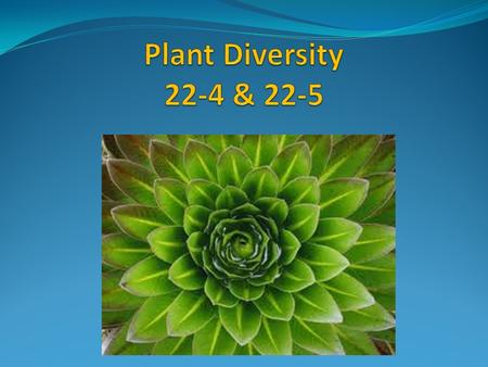 The seed was major step in the evolution of land plants. It allowed plants to be able to colonize dryer areas of land.