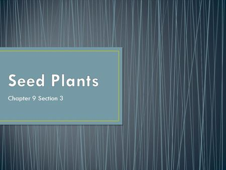 Chapter 9 Section 3. Leaves Stems Roots Vascular tissue Reproduce by seeds which contain embryo and stored food.