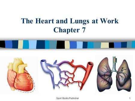 Sport Books Publisher1 The Heart and Lungs at Work Chapter 7.