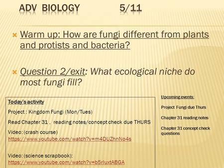 ADV Biology 1 6 Warm Up Describe Something Besides