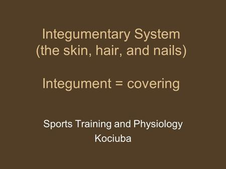 Integumentary System (the skin, hair, and nails) Integument = covering Sports Training and Physiology Kociuba.