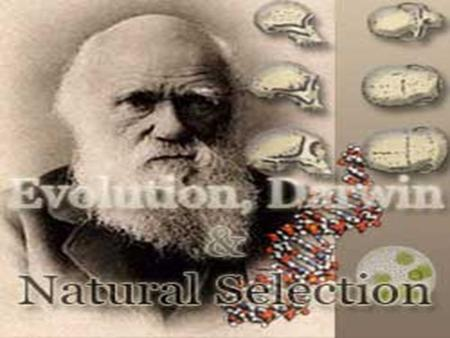 Charles Darwin Proposed a way how evolution works – How did creatures change over time? – by natural selection Collected a lot of evidence to support.