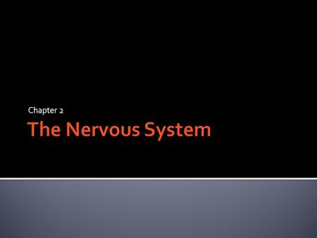 Chapter 2.  Central Nervous System (CNS)  Brain and Spinal Cord (all nerves within our bones) p. 61  Peripheral Nervous System (PNS)  All other nerves.