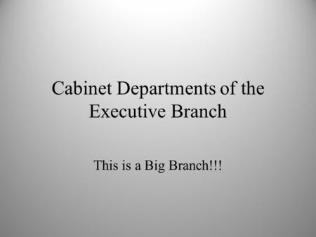Cabinet Departments of the Executive Branch