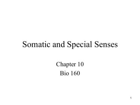 1 Somatic and Special Senses Chapter 10 Bio 160. 2 Introduction Sensory receptors detect changes in the environment and stimulate neurons to send nerve.