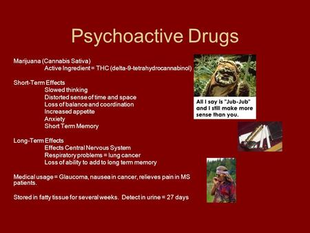 Psychoactive Drugs Marijuana (Cannabis Sativa) Active Ingredient = THC (delta-9-tetrahydrocannabinol) Short-Term Effects Slowed thinking Distorted sense.