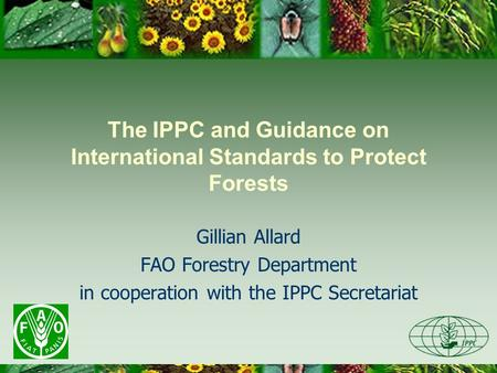 The IPPC and Guidance on International Standards to Protect Forests Gillian Allard FAO Forestry Department in cooperation with the IPPC Secretariat.
