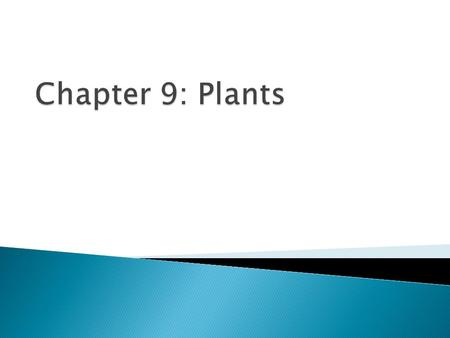Chapter 9: Plants.