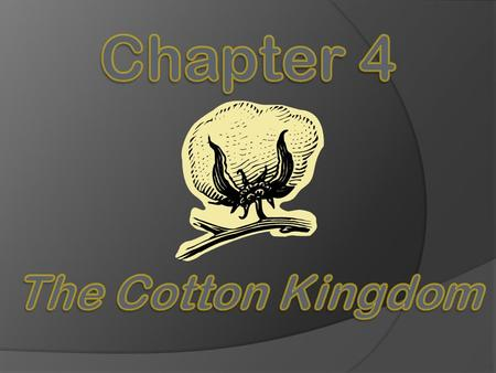 Chapter 4 The Cotton Kingdom