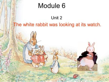Module 6 Unit 2 The white rabbit was looking at its watch.