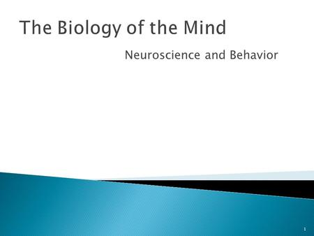 Neuroscience and Behavior 1 The Biology of the Mind.
