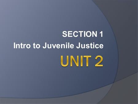 SECTION 1 Intro to Juvenile Justice