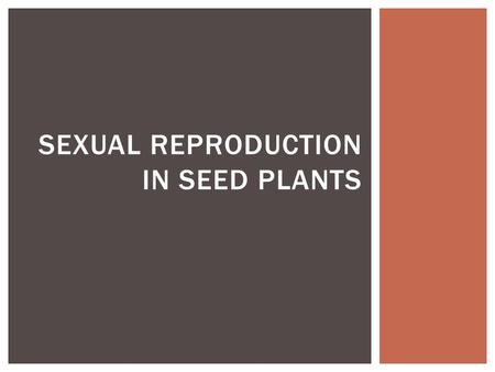 SEXUAL REPRODUCTION IN SEED PLANTS. I. REPRODUCTIVE STRUCTURES OF SEED PLANTS.