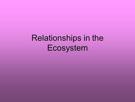 Relationships in the Ecosystem. What are the types of relationships? 1)Predator / Prey 2)Competition 3)Symbiosis A) commensalism B) mutualism C) parasitism.