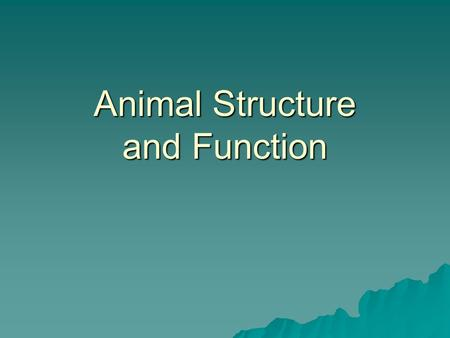Animal Structure and Function. Tissue Groups of cells with a common structure and function.