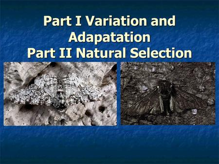 Part I Variation and Adapatation Part II Natural Selection