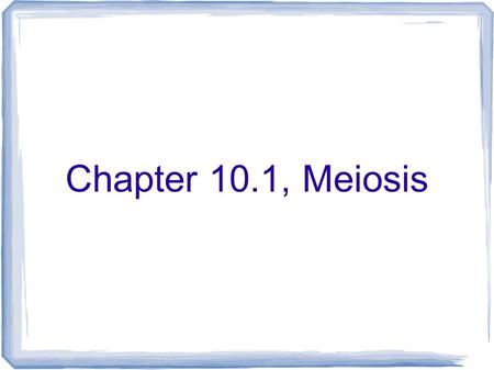 Chapter 10.1, Meiosis.